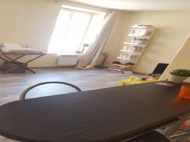 location saisonni re appartement dijon 21000 1594281. Black Bedroom Furniture Sets. Home Design Ideas