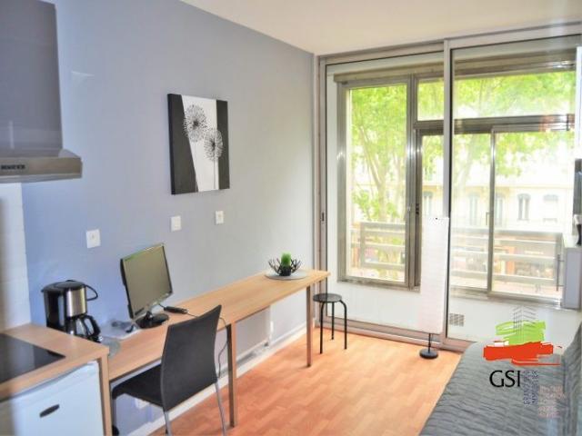 location saisonni re appartement toulouse 31000 1496917. Black Bedroom Furniture Sets. Home Design Ideas
