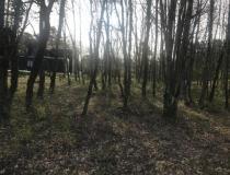 Vente terrain Castelfranc 46140 [4/6790209]