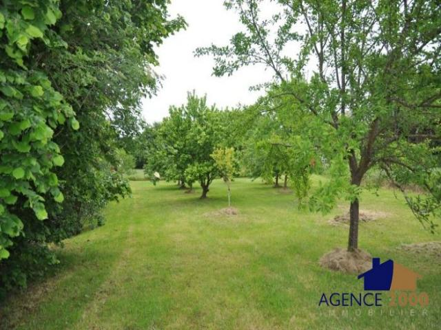 Achat terrain laprade immobilier laprade 16390 4449122 for Agence immobiliere 2000 barbezieux