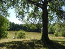 Vente terrain Le Chatelet 18170 [4/6683639]