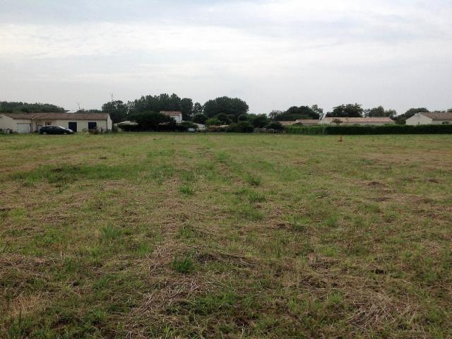 Achat terrain montpellier de medillan immobilier for Terrain montpellier
