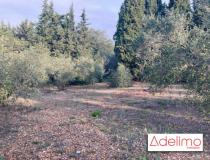 Vente terrain St Gilles 30800 [4/6860873]