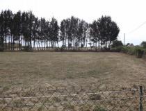 Immobilier terrain St Leger Sur Vouzance 03130 [4/5897236]